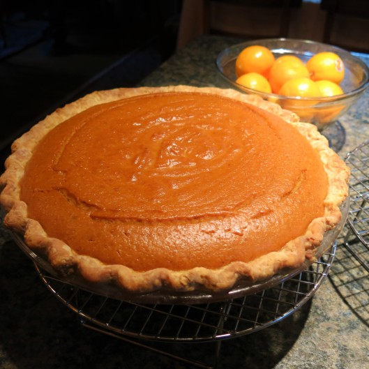 Spicy Pumpkin Pie