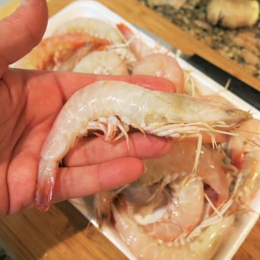 Key West Shrimp
