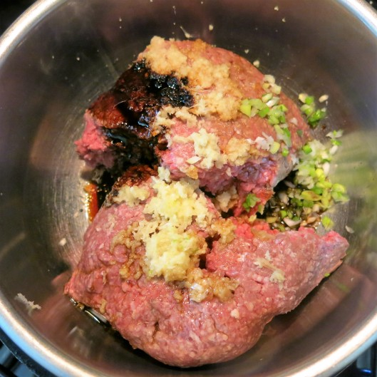 The Teriyaki Burger Meat Mixture