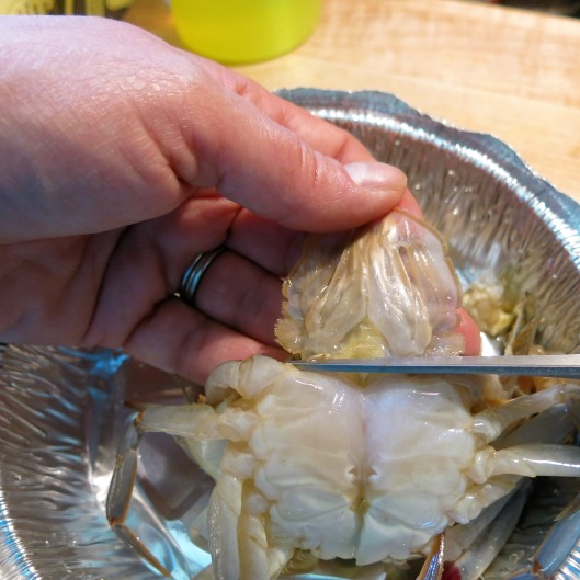 Cleaning a Soft-Shelled Crab - Removing the Tail Flap