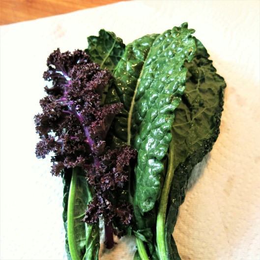 Red and Lacinato Kale