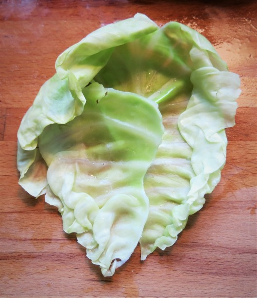 Cabbage Leaf with Rib Removed
