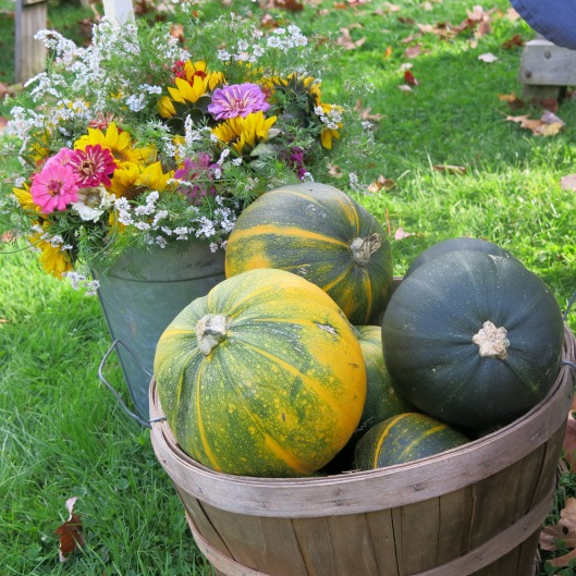 Winter Squash & Flowers