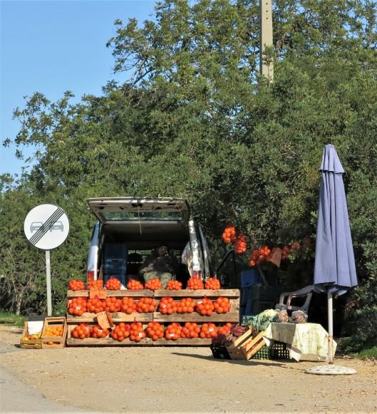Roadside Stand in the Algarve, Portugal