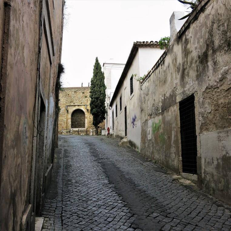 All Streets Lead to Castelo do São Jorge