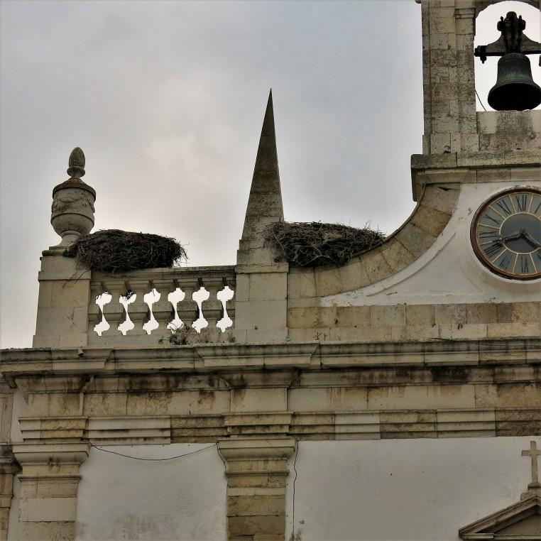 Storks on the Arco da Vila, Faro