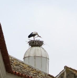 Stork on a Chimney