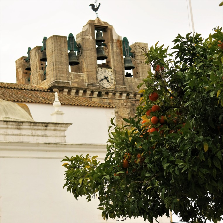 Cathedral of Faro and Bell Tower with Orange Tree