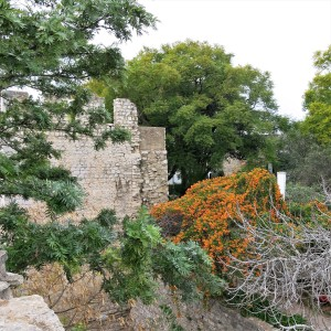 Castle Wall and Garden at Tavira - Algarve
