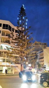 Tree Decorated for Christmas, Faro